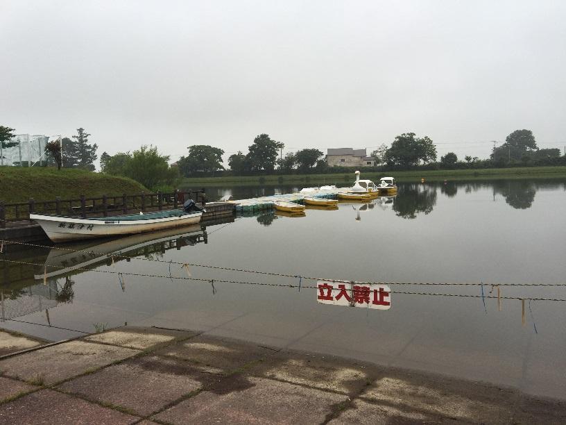 しのつ湖公園キャンプ場の貸しボート。