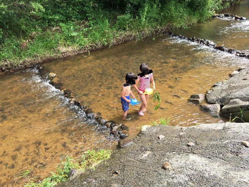 キャンプ場には小川も流れてる。