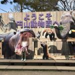 円山動物園に行ってきた