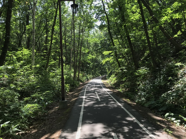 上野幌付近での景色。この中を自転車で駆け抜けるのは感動ものだった。
