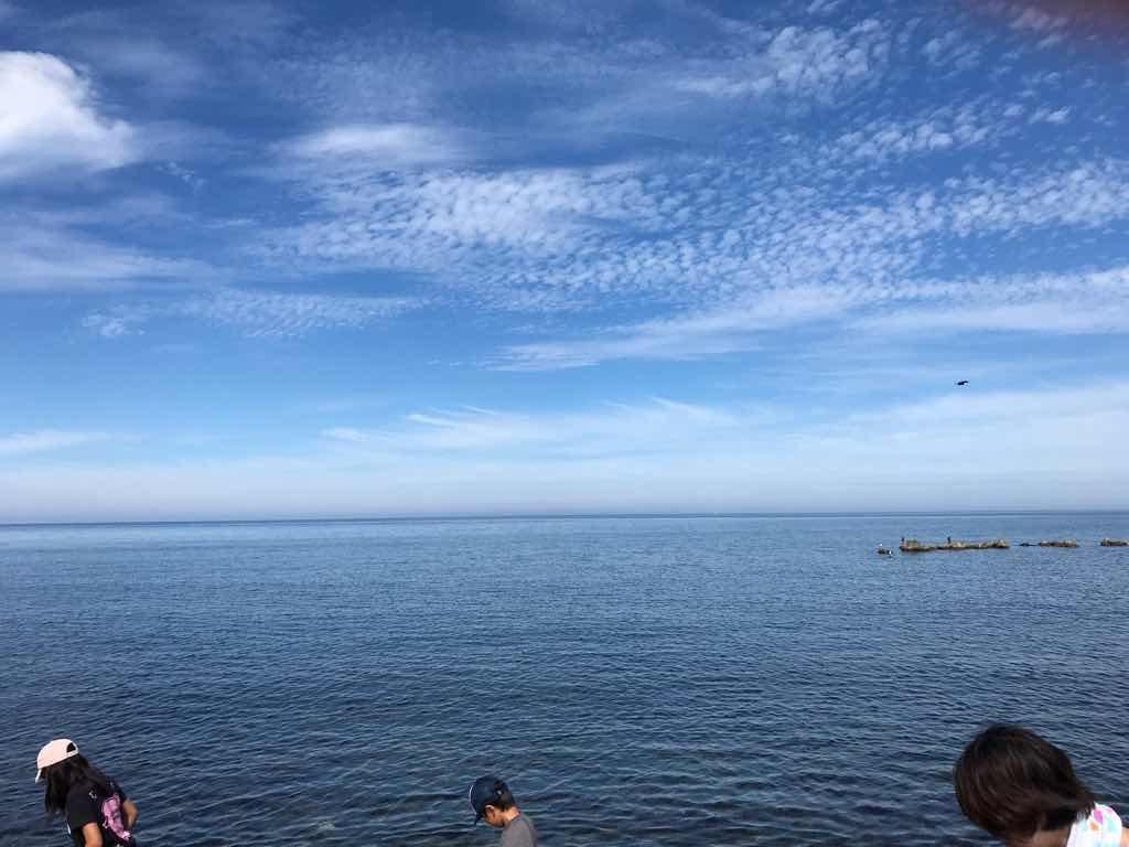 暑寒海浜キャンプ場で海遊び